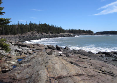 Tibbett Island Shoreline