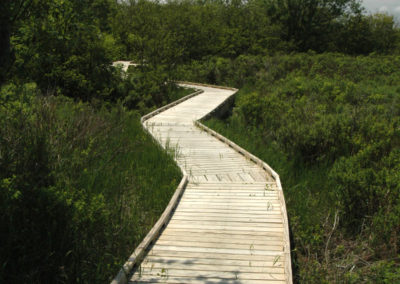 Accessible Boardwalk at Mowry Beach