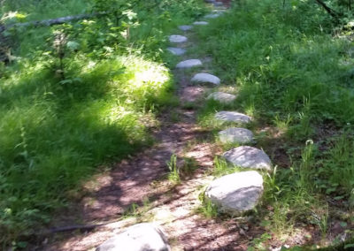 Stepping Stones on the Machias River Preserve Trail