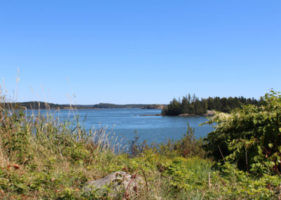 View of Cobscook Bay from the Pike Lands (Susan Jordan Bennett)