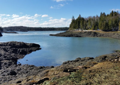 Reversing Falls Cove