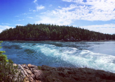 Reversing Falls and Falls Island (Landon Knittweis)