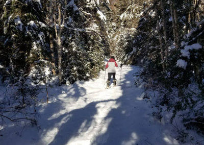 Winter Snowshoe Trek at Tide Mill Creek (David Dowley)
