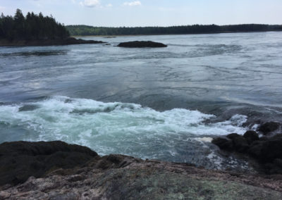 Outgoing Tide at Reversing Falls