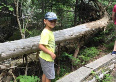 Exploring the Trail at Reversing Falls